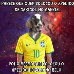Brasil 5